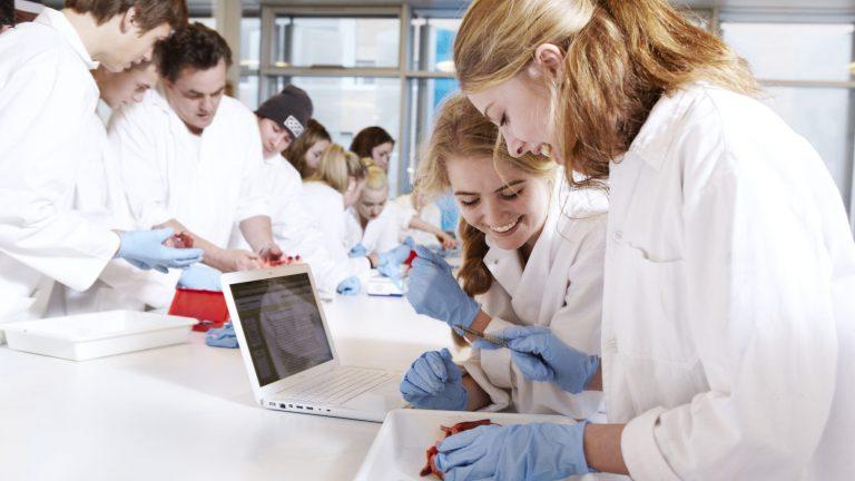 Biokemi Studieretning Ørestad Gymnasium
